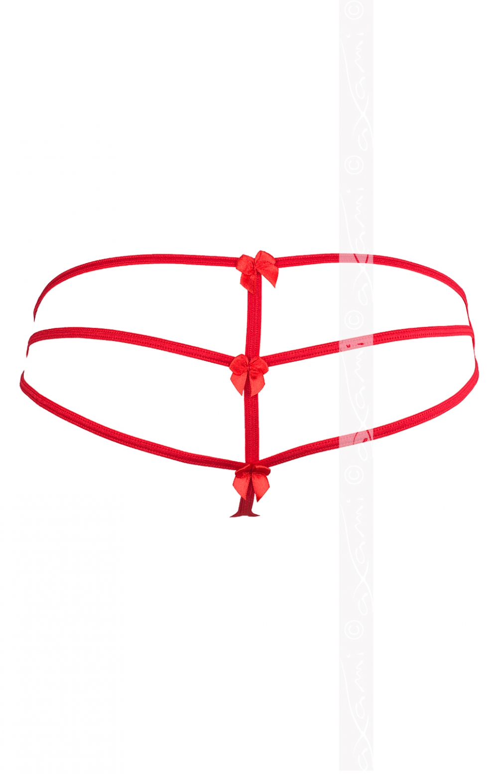 String V-5848 Cassiopea