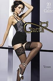 Klasyczne Gatta Venus - foto